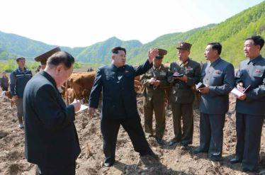 150511 - RS - KIM JONG UN - Genosse KIM JONG UN besuchte die Rinderfarm '18. Juli' - 05 - 경애하는 김정은동지께서 조선인민군 제580군부대산하 7월18일소목장을 현지지도하시였다