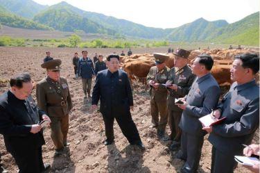 150511 - SK - KIM JONG UN - Genosse KIM JONG UN besuchte die Rinderfarm '18. Juli' - 07 - 경애하는 김정은동지께서 조선인민군 제580군부대산하 7월18일소목장을 현지지도하시였다