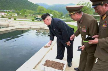 150515 - RS - KIM JONG UN - Marschall KIM JONG UN besichtigte die Fischzuchtanstalt Sinchang, die der 810. Truppe der KVA untersteht - 05 - 경애하는 김정은동지께서 조선인민군 제810군부대산하 신창양어장을 현지지도하시였다