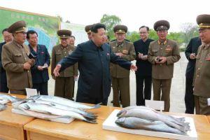 150515 - RS - KIM JONG UN - Marschall KIM JONG UN besichtigte die Fischzuchtanstalt Sinchang, die der 810. Truppe der KVA untersteht - 07 - 경애하는 김정은동지께서 조선인민군 제810군부대산하 신창양어장을 현지지도하시였다