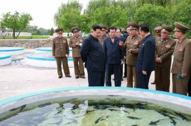 150515 - RS - KIM JONG UN - Marschall KIM JONG UN besichtigte die Fischzuchtanstalt Sinchang, die der 810. Truppe der KVA untersteht - 08 - 경애하는 김정은동지께서 조선인민군 제810군부대산하 신창양어장을 현지지도하시였다
