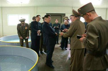 150515 - RS - KIM JONG UN - Marschall KIM JONG UN besichtigte die Fischzuchtanstalt Sinchang, die der 810. Truppe der KVA untersteht - 18 - 경애하는 김정은동지께서 조선인민군 제810군부대산하 신창양어장을 현지지도하시였다