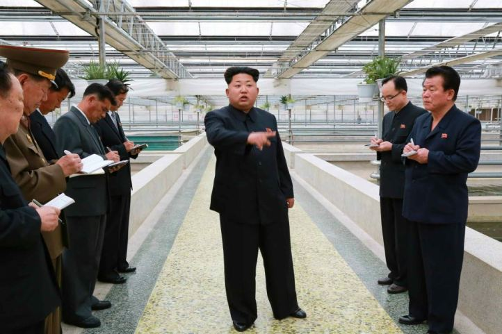 150519 - RS - KIM JONG UN - Marschall KIM JONG UN besuchte den Sumpfschildkrötenzuchtbetrieb Taedonggang - 01 - 경애하는 김정은동지께서 대동강자라공장을 현지지도하시였다