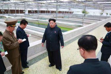 150519 - RS - KIM JONG UN - Marschall KIM JONG UN besuchte den Sumpfschildkrötenzuchtbetrieb Taedonggang - 02 - 경애하는 김정은동지께서 대동강자라공장을 현지지도하시였다
