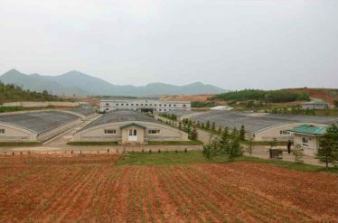 150519 - RS - KIM JONG UN - Marschall KIM JONG UN besuchte den Sumpfschildkrötenzuchtbetrieb Taedonggang - 08 - 경애하는 김정은동지께서 대동강자라공장을 현지지도하시였다