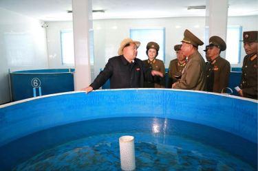 150523 - SK - KIM JONG UN - Marschall KIM JONG UN besichtigte eine Zuchtanstalt für Rassefisch und einen Fischzuchtbetrieb - 12 - 경애하는 김정은동지께서 조선인민군 제810군부대산하 석막대서양연어종어장과 락산바다연어양어사업소를 현지지도하시였다
