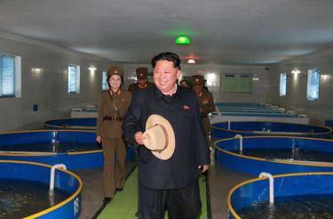 150523 - SK - KIM JONG UN - Marschall KIM JONG UN besichtigte eine Zuchtanstalt für Rassefisch und einen Fischzuchtbetrieb - 15 - 경애하는 김정은동지께서 조선인민군 제810군부대산하 석막대서양연어종어장과 락산바다연어양어사업소를 현지지도하시였다