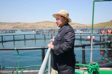 150523 - SK - KIM JONG UN - Marschall KIM JONG UN besichtigte eine Zuchtanstalt für Rassefisch und einen Fischzuchtbetrieb - 20 - 경애하는 김정은동지께서 조선인민군 제810군부대산하 석막대서양연어종어장과 락산바다연어양어사업소를 현지지도하시였다