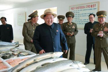 150523 - SK - KIM JONG UN - Marschall KIM JONG UN besichtigte eine Zuchtanstalt für Rassefisch und einen Fischzuchtbetrieb - 27 - 경애하는 김정은동지께서 조선인민군 제810군부대산하 석막대서양연어종어장과 락산바다연어양어사업소를 현지지도하시였다