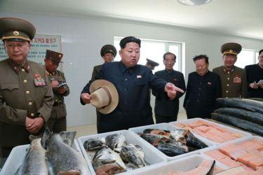 150523 - SK - KIM JONG UN - Marschall KIM JONG UN besichtigte eine Zuchtanstalt für Rassefisch und einen Fischzuchtbetrieb - 30 - 경애하는 김정은동지께서 조선인민군 제810군부대산하 석막대서양연어종어장과 락산바다연어양어사업소를 현지지도하시였다