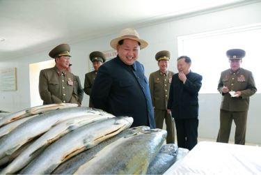 150523 - SK - KIM JONG UN - Marschall KIM JONG UN besichtigte eine Zuchtanstalt für Rassefisch und einen Fischzuchtbetrieb - 32 - 경애하는 김정은동지께서 조선인민군 제810군부대산하 석막대서양연어종어장과 락산바다연어양어사업소를 현지지도하시였다