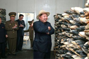 150523 - SK - KIM JONG UN - Marschall KIM JONG UN besichtigte eine Zuchtanstalt für Rassefisch und einen Fischzuchtbetrieb - 34 - 경애하는 김정은동지께서 조선인민군 제810군부대산하 석막대서양연어종어장과 락산바다연어양어사업소를 현지지도하시였다