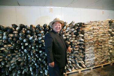 150523 - SK - KIM JONG UN - Marschall KIM JONG UN besichtigte eine Zuchtanstalt für Rassefisch und einen Fischzuchtbetrieb - 35 - 경애하는 김정은동지께서 조선인민군 제810군부대산하 석막대서양연어종어장과 락산바다연어양어사업소를 현지지도하시였다