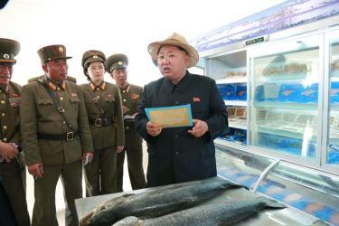 150523 - SK - KIM JONG UN - Marschall KIM JONG UN besichtigte eine Zuchtanstalt für Rassefisch und einen Fischzuchtbetrieb - 41 - 경애하는 김정은동지께서 조선인민군 제810군부대산하 석막대서양연어종어장과 락산바다연어양어사업소를 현지지도하시였다