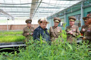 150529 - RS - KIM JONG UN - Marschall KIM JONG UN besuchte die von der Volksarmee neu gestaltete komplexe Baumschule - 03 - 경애하는 김정은동지께서 인민군대에서 새로 꾸리고있는 종합양묘장을 현지지도하시였다