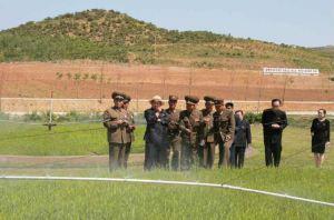 150529 - RS - KIM JONG UN - Marschall KIM JONG UN besuchte die von der Volksarmee neu gestaltete komplexe Baumschule - 04 - 경애하는 김정은동지께서 인민군대에서 새로 꾸리고있는 종합양묘장을 현지지도하시였다