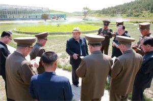 150529 - RS - KIM JONG UN - Marschall KIM JONG UN besuchte die von der Volksarmee neu gestaltete komplexe Baumschule - 05 - 경애하는 김정은동지께서 인민군대에서 새로 꾸리고있는 종합양묘장을 현지지도하시였다