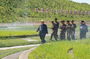 150529 - RS - KIM JONG UN - Marschall KIM JONG UN besuchte die von der Volksarmee neu gestaltete komplexe Baumschule - 08 - 경애하는 김정은동지께서 인민군대에서 새로 꾸리고있는 종합양묘장을 현지지도하시였다