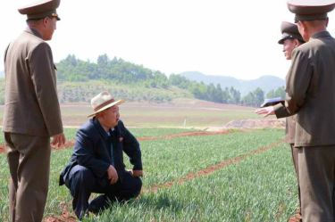 150601 - RS -  KIM JONG UN - Marschall KIM JONG UN besichtigte den Landwirtschaftsbetrieb Nr. 1116 der 810. Truppe der KVA - 04 -경애하는 김정은동지께서 조선인민군 제810군부대산하 1116호농장을 현지지도하시였다