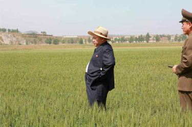 150601 - RS -  KIM JONG UN - Marschall KIM JONG UN besichtigte den Landwirtschaftsbetrieb Nr. 1116 der 810. Truppe der KVA - 05 -경애하는 김정은동지께서 조선인민군 제810군부대산하 1116호농장을 현지지도하시였다