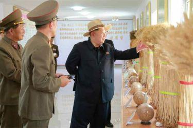 150601 - RS -  KIM JONG UN - Marschall KIM JONG UN besichtigte den Landwirtschaftsbetrieb Nr. 1116 der 810. Truppe der KVA - 10 -경애하는 김정은동지께서 조선인민군 제810군부대산하 1116호농장을 현지지도하시였다