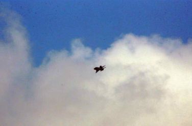 150622 - RS - KIM JONG UN - Marschall KIM JONG UN sah sich die Flugübung der Überschallkampfflugzeugführerinnen an - 12 - 선군조선의 첫 녀성초음속전투기비행사 탄생 영웅조선의 효녀, 선군조선 하늘의 꽃 조금향, 림설동무들 조선인민군 최고사령관 김정은동지께서 녀성초음속전투기비행사 조금향, 림설동무들의 비행훈련을 보시였다