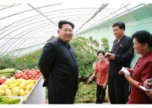150630 - RS - KIM JONG UN - Genosse KIM JONG UN besuchte den Genossenschaftlichen Landwirtschaftsbetrieb Jangchon für Gemüsebau - 01 - 경애하는 김정은동지께서 사회주의농촌문화건설의 본보기, 기준으로 천지개벽된 평양시 사동구역 장천남새전문협동농장을 현지지도하시였다