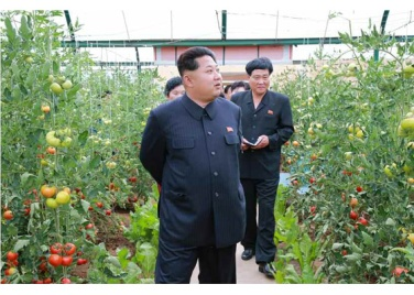 150630 - RS - KIM JONG UN - Genosse KIM JONG UN besuchte den Genossenschaftlichen Landwirtschaftsbetrieb Jangchon für Gemüsebau - 03 - 경애하는 김정은동지께서 사회주의농촌문화건설의 본보기, 기준으로 천지개벽된 평양시 사동구역 장천남새전문협동농장을 현지지도하시였다