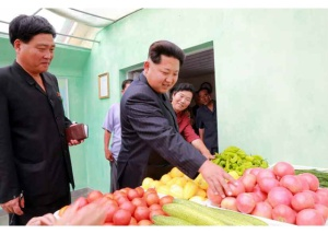 150630 - RS - KIM JONG UN - Genosse KIM JONG UN besuchte den Genossenschaftlichen Landwirtschaftsbetrieb Jangchon für Gemüsebau - 04 - 경애하는 김정은동지께서 사회주의농촌문화건설의 본보기, 기준으로 천지개벽된 평양시 사동구역 장천남새전문협동농장을 현지지도하시였다
