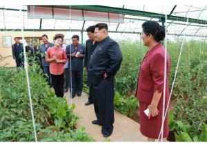 150630 - RS - KIM JONG UN - Genosse KIM JONG UN besuchte den Genossenschaftlichen Landwirtschaftsbetrieb Jangchon für Gemüsebau - 08 - 경애하는 김정은동지께서 사회주의농촌문화건설의 본보기, 기준으로 천지개벽된 평양시 사동구역 장천남새전문협동농장을 현지지도하시였다