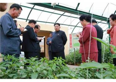 150630 - RS - KIM JONG UN - Genosse KIM JONG UN besuchte den Genossenschaftlichen Landwirtschaftsbetrieb Jangchon für Gemüsebau - 09 - 경애하는 김정은동지께서 사회주의농촌문화건설의 본보기, 기준으로 천지개벽된 평양시 사동구역 장천남새전문협동농장을 현지지도하시였다