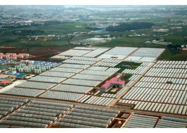 150630 - RS - KIM JONG UN - Genosse KIM JONG UN besuchte den Genossenschaftlichen Landwirtschaftsbetrieb Jangchon für Gemüsebau - 12 - 경애하는 김정은동지께서 사회주의농촌문화건설의 본보기, 기준으로 천지개벽된 평양시 사동구역 장천남새전문협동농장을 현지지도하시였다