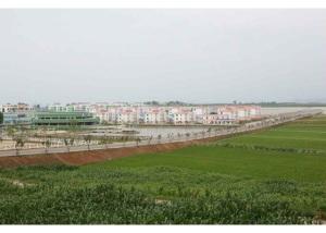 150630 - RS - KIM JONG UN - Genosse KIM JONG UN besuchte den Genossenschaftlichen Landwirtschaftsbetrieb Jangchon für Gemüsebau - 14 - 경애하는 김정은동지께서 사회주의농촌문화건설의 본보기, 기준으로 천지개벽된 평양시 사동구역 장천남새전문협동농장을 현지지도하시였다