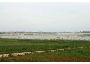 150630 - RS - KIM JONG UN - Genosse KIM JONG UN besuchte den Genossenschaftlichen Landwirtschaftsbetrieb Jangchon für Gemüsebau - 17 - 경애하는 김정은동지께서 사회주의농촌문화건설의 본보기, 기준으로 천지개벽된 평양시 사동구역 장천남새전문협동농장을 현지지도하시였다