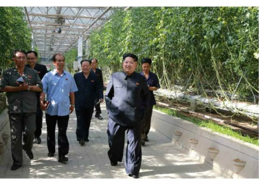 150707 - RS - KIM JONG UN - Marschall KIM JONG UN besichtigte das Wissenschaftliche Institut für Gemüse Pyongyang - 04 - 경애하는 김정은동지께서 평양남새과학연구소를 현지지도하시였다