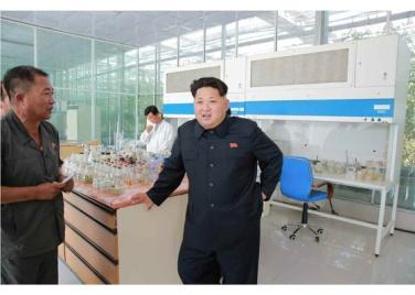 150707 - RS - KIM JONG UN - Marschall KIM JONG UN besichtigte das Wissenschaftliche Institut für Gemüse Pyongyang - 13 - 경애하는 김정은동지께서 평양남새과학연구소를 현지지도하시였다