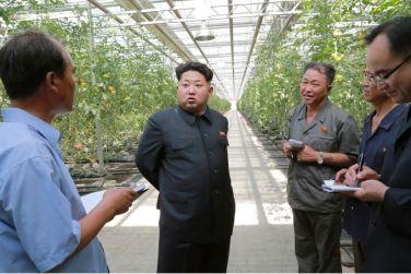 150707 - SK - KIM JONG UN - Marschall KIM JONG UN besichtigte das Wissenschaftliche Institut für Gemüse Pyongyang - 10 - 경애하는 김정은동지께서 평양남새과학연구소를 현지지도하시였다