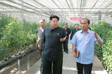 150707 - SK - KIM JONG UN - Marschall KIM JONG UN besichtigte das Wissenschaftliche Institut für Gemüse Pyongyang - 15 - 경애하는 김정은동지께서 평양남새과학연구소를 현지지도하시였다