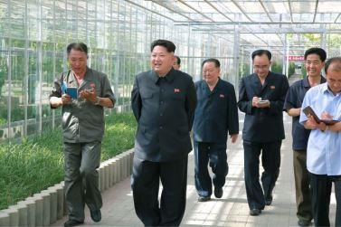 150707 - SK - KIM JONG UN - Marschall KIM JONG UN besichtigte das Wissenschaftliche Institut für Gemüse Pyongyang - 16 - 경애하는 김정은동지께서 평양남새과학연구소를 현지지도하시였다