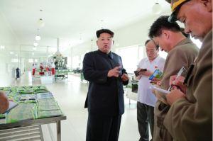 150711 - SK - KIM JONG UN - Marschall KIM JONG UN besichtigte die Verarbeitungsfabrik für Seetang Taegyong in Pyongyang - 02 - 경애하는 김정은동지께서 평양대경김가공공장을 현지지도하시였다