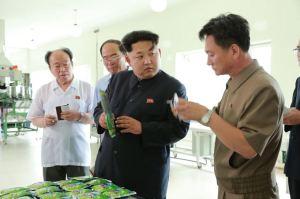 150711 - SK - KIM JONG UN - Marschall KIM JONG UN besichtigte die Verarbeitungsfabrik für Seetang Taegyong in Pyongyang - 03 - 경애하는 김정은동지께서 평양대경김가공공장을 현지지도하시였다