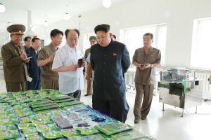 150711 - SK - KIM JONG UN - Marschall KIM JONG UN besichtigte die Verarbeitungsfabrik für Seetang Taegyong in Pyongyang - 06 - 경애하는 김정은동지께서 평양대경김가공공장을 현지지도하시였다