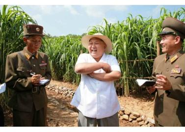 150813 - RS - KIM JONG UN - Marschall KIM JONG UN besichtigte den Landwirtschaftsbetrieb Nr. 1116 der 810. Truppe der KVA - 02 - 경애하는 김정은동지께서 조선인민군 제810군부대산하 1116호농장을 현지지도하시였다