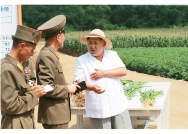 150813 - RS - KIM JONG UN - Marschall KIM JONG UN besichtigte den Landwirtschaftsbetrieb Nr. 1116 der 810. Truppe der KVA - 07 - 경애하는 김정은동지께서 조선인민군 제810군부대산하 1116호농장을 현지지도하시였다