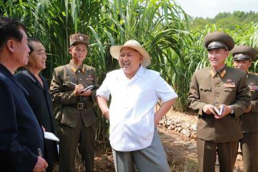150813 - SK - KIM JONG UN - Marschall KIM JONG UN besichtigte den Landwirtschaftsbetrieb Nr. 1116 der 810. Truppe der KVA - 03 - 경애하는 김정은동지께서 조선인민군 제810군부대산하 1116호농장을 현지지도하시였다