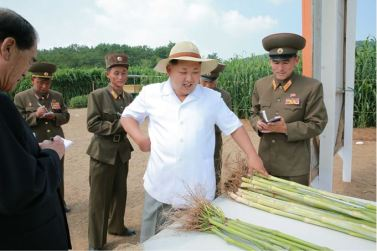 150813 - SK - KIM JONG UN - Marschall KIM JONG UN besichtigte den Landwirtschaftsbetrieb Nr. 1116 der 810. Truppe der KVA - 05 - 경애하는 김정은동지께서 조선인민군 제810군부대산하 1116호농장을 현지지도하시였다