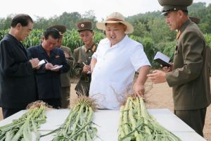 150813 - SK - KIM JONG UN - Marschall KIM JONG UN besichtigte den Landwirtschaftsbetrieb Nr. 1116 der 810. Truppe der KVA - 06 - 경애하는 김정은동지께서 조선인민군 제810군부대산하 1116호농장을 현지지도하시였다