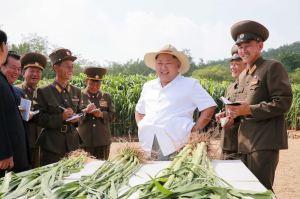 150813 - SK - KIM JONG UN - Marschall KIM JONG UN besichtigte den Landwirtschaftsbetrieb Nr. 1116 der 810. Truppe der KVA - 07 - 경애하는 김정은동지께서 조선인민군 제810군부대산하 1116호농장을 현지지도하시였다