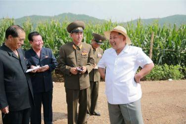 150813 - SK - KIM JONG UN - Marschall KIM JONG UN besichtigte den Landwirtschaftsbetrieb Nr. 1116 der 810. Truppe der KVA - 08 - 경애하는 김정은동지께서 조선인민군 제810군부대산하 1116호농장을 현지지도하시였다