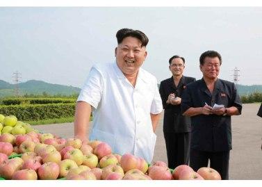 150818 - RS - KIM JONG UN - Marschall KIM JONG UN besuchte das Obstbaukombinat Taedonggang - 10 - 경애하는 김정은동지께서 대동강과수종합농장을 현지지도하시였다